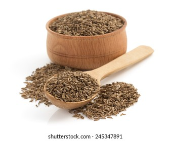 Everything about When To Plant Cumin Seeds