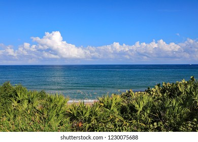 Cumulus clouds over the Atlantic Ocean off Singer Island, Florida, on a calm day, with natural sand dune vegetation to protect it from erosion.