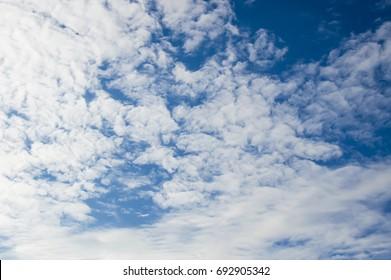 cumulus clouds over blue skay