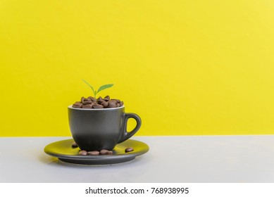 Cup of black coffee and a small tree placed on a white background yellow background.