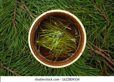 Cup of black tea with pine tree needles in it on green needles background top view. Healthy beverage tea in old cup.