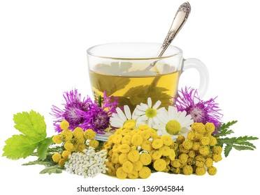 A cup of broth with medicinal herbs with transparent background