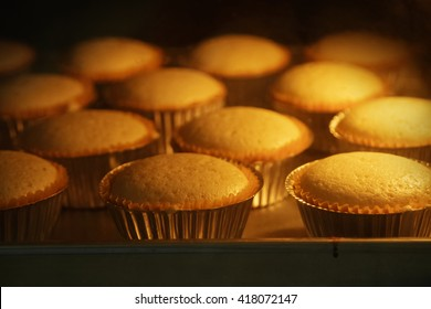 Cup cakes baking in oven, homemade bakery