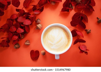 Cup of cappuccino with red eucalyptus on trendy color background .