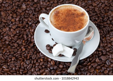 Cup of cappuccino and sugar cubes surrounded with coffee beans