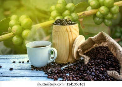 Cup of coffee espresso and coffee beans in burlap sack on coffee tree background