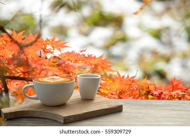 Cup of coffee latte on old bark in autumn with tree maple of colorful leaves in the garden with copy space. Seasonal fall and beautiful relax concept
