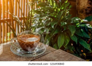 Guten Morgen Katze Images Stock Photos Vectors Shutterstock