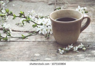 Cup coffee/still life/spring concept