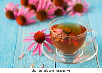 Cup of echinacea tea on blue wooden table