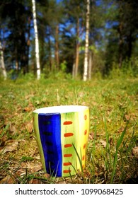 cup in the forest