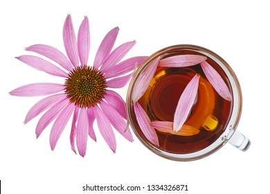 Cup of herbal tea and echinacea flower isolated on white backgrounds