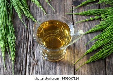 A cup of herbal tea with fresh horsetail twigs on a table