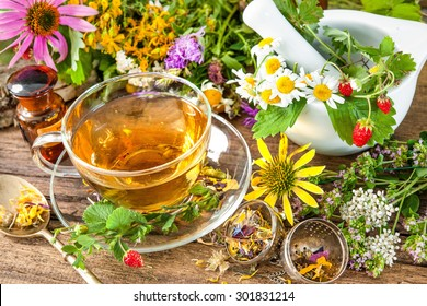 Cup of herbal tea from wild flowers and various herbs