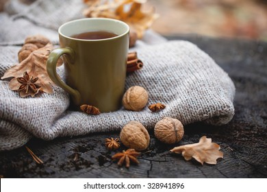 Cup of hot drink, knitting clothes, winter scarf on an old dry tree stump in the forest