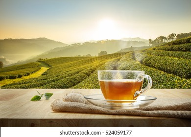 Cup of hot tea and leaf on the wooden table with the tea plantations background
