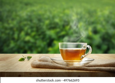 Cup of hot tea and organic green tea leaf on the wooden table with the tea plantations background with copy space