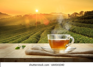 Cup of hot tea and organic green tea leaves on the wooden table with the tea plantations background