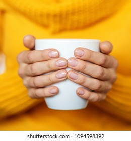 Cup of hot tea in your hands. Square. Beverage concept, lifestyle, autumn and winter.