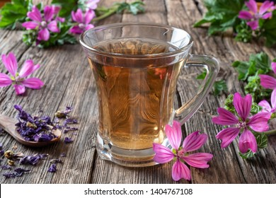 A cup of mallow tea with fresh blooming malva sylvestris plant in the background