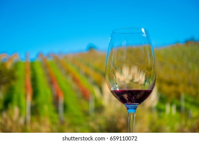 Cup of red wine on vineyard background in waiheke island in auckland, in a beautiful blue sky in summer time