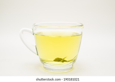 A cup of stevia tea herb isolated.