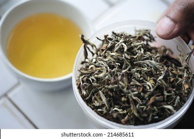 Cup of tea and tea leaf, Darjeeling, India