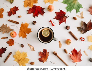 Cup of tea with lemon, honey, autumn leaves, apples on white background. Flat lay, top view, copy space. Autumn, fall concept.