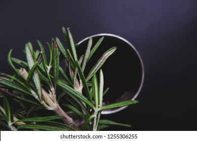 Cup of winter tea with green rosemary closeup over dark background. Hugge cozy atmosphere with hot winter tea with christmas decor and aromatic rosemary green branch. Design background for xmas cards.