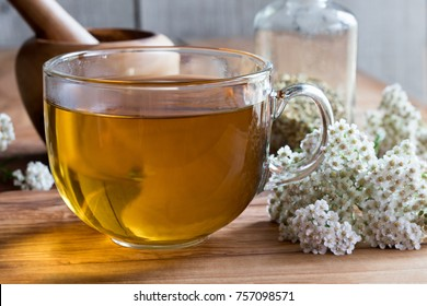A cup of yarrow tea on a wooden table with yarrow flowers in the background