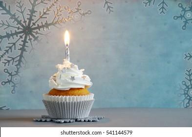 Awe Inspiring Winter Birthday Cake Images Stock Photos Vectors Shutterstock Birthday Cards Printable Nowaargucafe Filternl