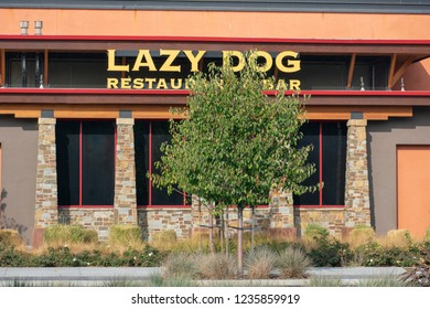 Cupertino, California, USA - November 20, 2018 - Lazy Dog Restaurant sign on the chain restaurant and bar located in outdoor Main Street Cupertino shopping center in Silicon Valley