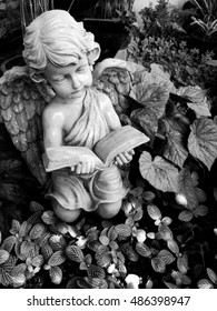 Cupid reading a love story