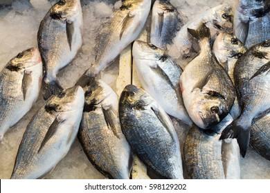 Cupra fish for sale at market