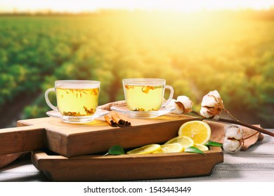 Cups of hot tea with lemon and spices on table in green field