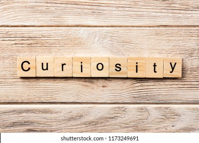 curiosity word written on wood block. curiosity text on table, concept.