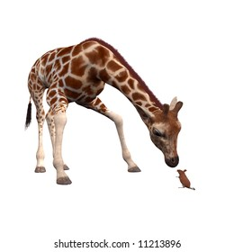 Curious 3D Giraffe with a brave mouse