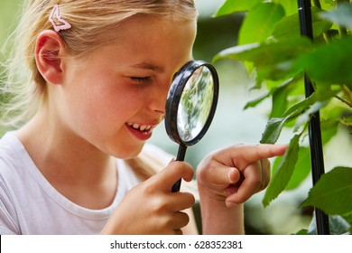 Curious child explores nature and looks at leaf with loupe