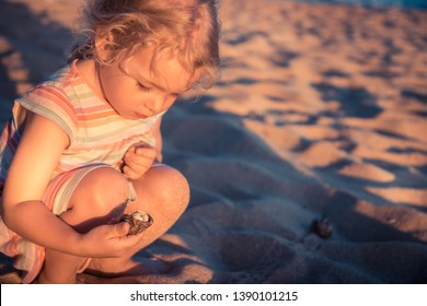 Curious child girl toddler portrait playing on beach with hermit crab during summer vacation concept childhood lifestyle