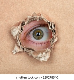 Curious espionage eye in hole in brown carton wall