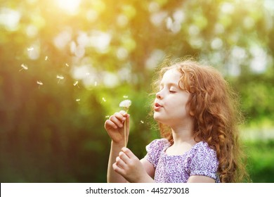 Curly girl blowing white dandelion in meadow. Healthy, breathing, medical, allergy, happy childhood concept.