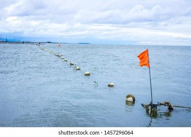 Curonian lagoon in Nida, Baltic sea