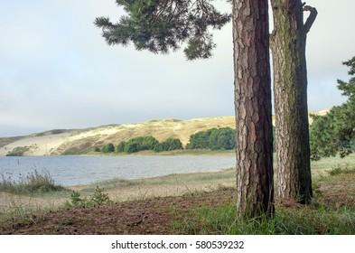 Curonian spit national park.Unesco heritage