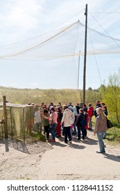 CURONIAN SPIT, RUSSIA - May 02.2018: The Curonian Spit National Park. Ornithological station of Fringilla. Bird Trap. Tourists on excursion