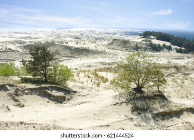 Curonian Spit, Russia  - MAY, 25, 2016  White sand dunes on the Curonian Spit