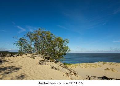 Curonian Spit seaside with sandy dunes