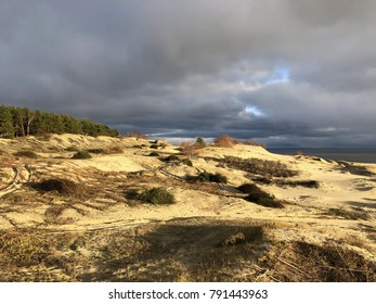 The Curonian Spit. Winter