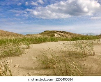 Curonian split dunes