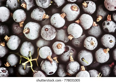 Currant black frozen. Ecological berries for desserts, smoothie or jam. Currant organic berries source of vitamins top view flat lay macro. Close up of frozen fruit berries currant background.