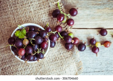 currant with gooseberries